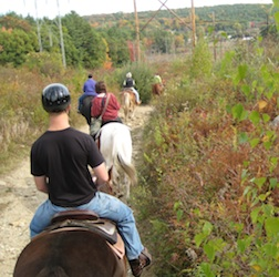 Autumn Local Ride with Ridge Valley Riding Stables